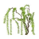 PTMD ' Leaves Plant groene waterplant tak ' _
