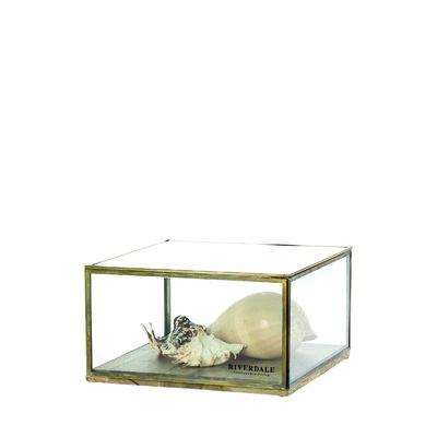Riverdale Display Box Belton 20 cm