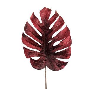 PTMD ' Leaves Plant Bordeaux velvet monstera blad '